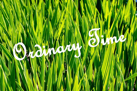 Ordinary Time is Green | Faithtwins' Weblog